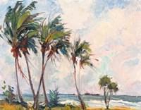 Six Palms Fine Art Print