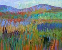 Color Field No. 68 Fine Art Print