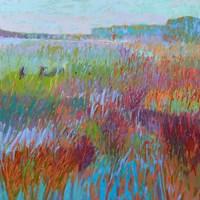 Color Field No. 71 Fine Art Print