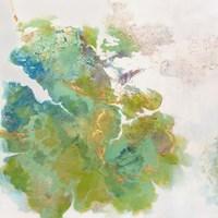 Lichen 1 Fine Art Print