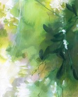 Verdant Shallows II Fine Art Print