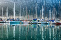 Hout Bay Harbor, Hout Bay South Africa Fine Art Print