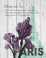 Paris Iris Fine Art Print