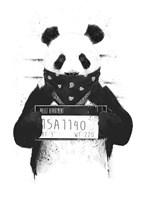Bad Panda Fine Art Print