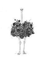 Floral Ostrich Fine Art Print