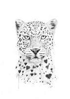 Lovely Leopard Fine Art Print