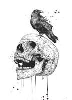 New Skull Fine Art Print