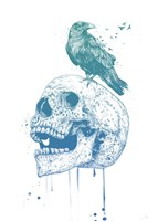 New Skull (Blue) Fine Art Print