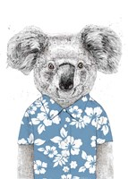 Summer Koala (Blue) Fine Art Print