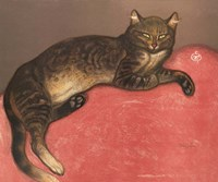 Cat on a Cushion Fine Art Print