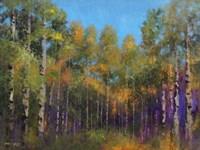 Aspen Autumn Fine Art Print