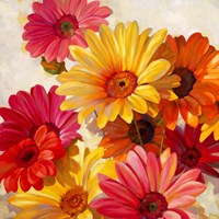 Daisies for Spring Fine Art Print