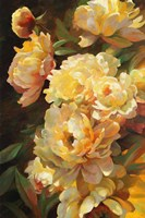 Peonies for Springtime Fine Art Print
