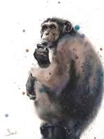 Chimpanzee Fine Art Print