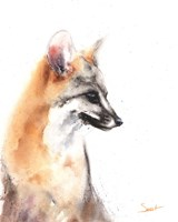 Grey Fox Fine Art Print