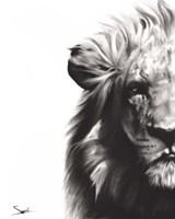 Lion II Fine Art Print