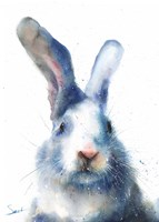 White Rabbit Fine Art Print