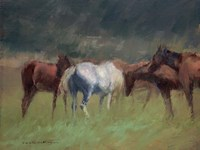 Southern Horses Fine Art Print