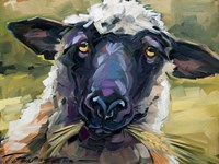 Bless Ewe Fine Art Print
