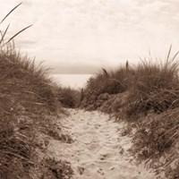 Dune Path Fine Art Print