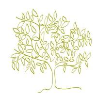 A Citron Tree Fine Art Print