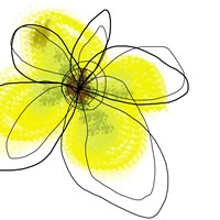 Yellow Petals Four Fine Art Print