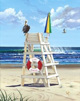 Pelican Perch Fine Art Print