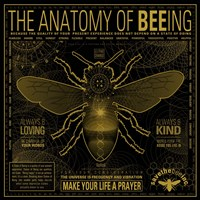 Anatomy 0F Bee-Ing Fine Art Print