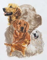 Golden Retriever with Ghost Image Fine Art Print