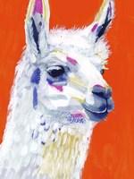 Animal Party IV Framed Print