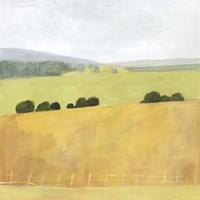 Soft Fieldscape II Framed Print