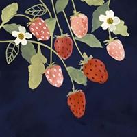 Fresh Fruit I Framed Print
