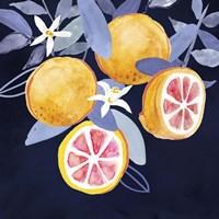 Fresh Fruit III Framed Print