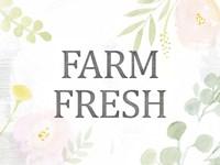 Farmhouse Sayings VI Framed Print