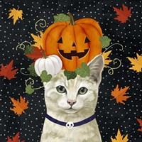 Halloween Cat I Framed Print