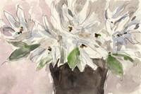 Magnolia Watercolor Study I Framed Print
