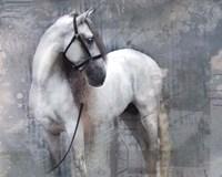 Horse Exposures II Fine Art Print