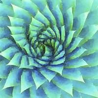 Succulente VI Fine Art Print