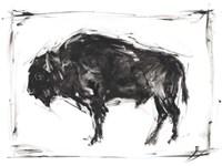 Dynamic Bison II Fine Art Print