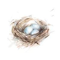 Bird Life III Fine Art Print