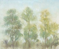 Muted Trees II Fine Art Print