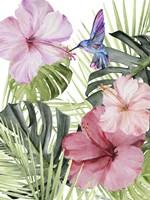 Hibiscus & Hummingbird I Fine Art Print