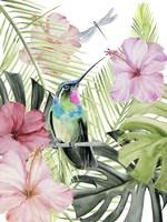 Hibiscus & Hummingbird II Fine Art Print