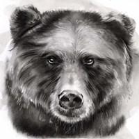Bear Grin I Fine Art Print