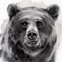 Bear Grin II Fine Art Print