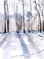 Winter Light II Fine Art Print
