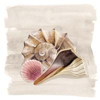 Ocean Keepsake II Fine Art Print