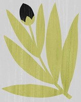 Flower Cutting I Fine Art Print