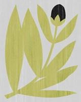 Flower Cutting II Fine Art Print