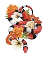 King Snake I Fine Art Print